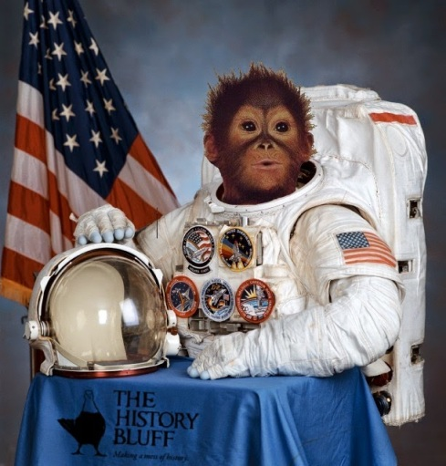 Funny space monkey