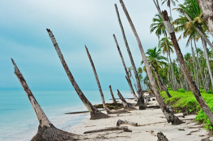 Desert Island Coastline After Tsunami, Banyak Archipelago