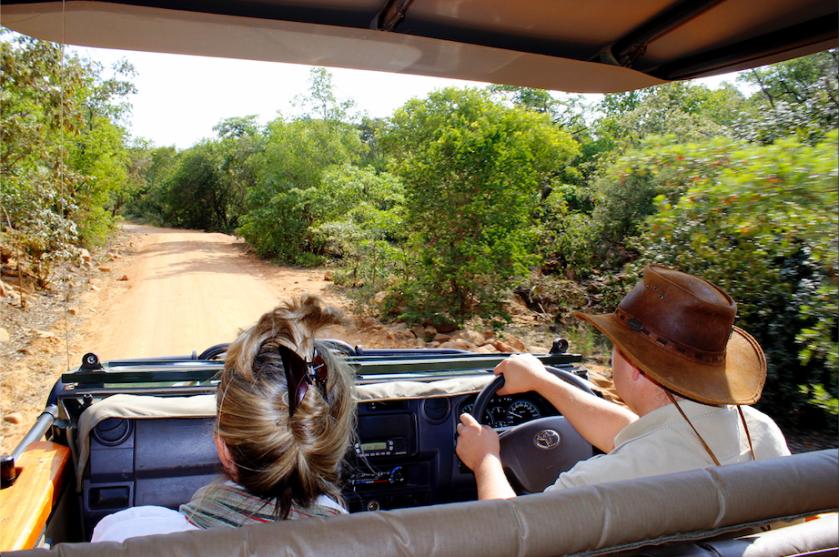 Mhondoro luxury South Africa safari