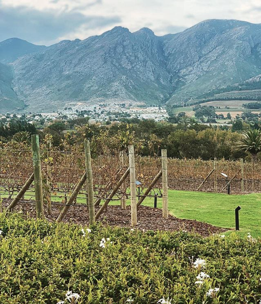 Why I Love Franschhoek in Winter