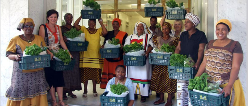 Harvest of Hope sustainable farming Cape Town