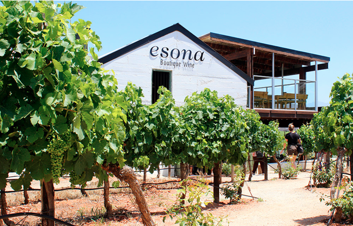 Esona wine Robertson South Africa