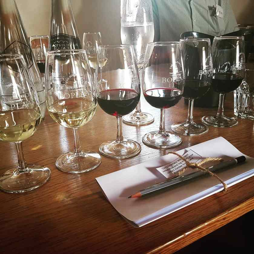 Boplaas Wine Tasting South Africa